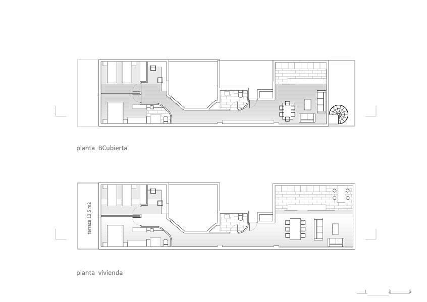 5_plantas-esc